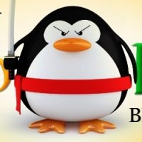 SEO – Faça o Checklist do Penguin Update do Google